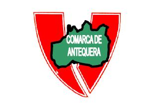 logo Plataforma Voluntariado Antequera