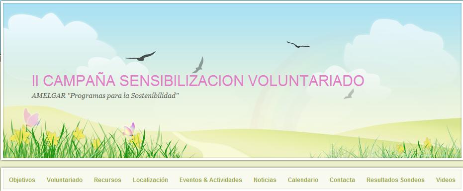 portada página web campaña voluntariado 2009